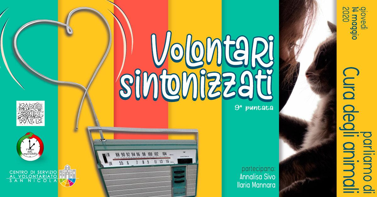 Banner Dialoghi su Cura degli animali Volontari Sintonizzati CSVSN Radio