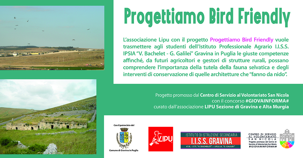 Banner Progettiamo Bird Friendly #GIOVANINFORMA LIPU Gravina CSV San Nicola
