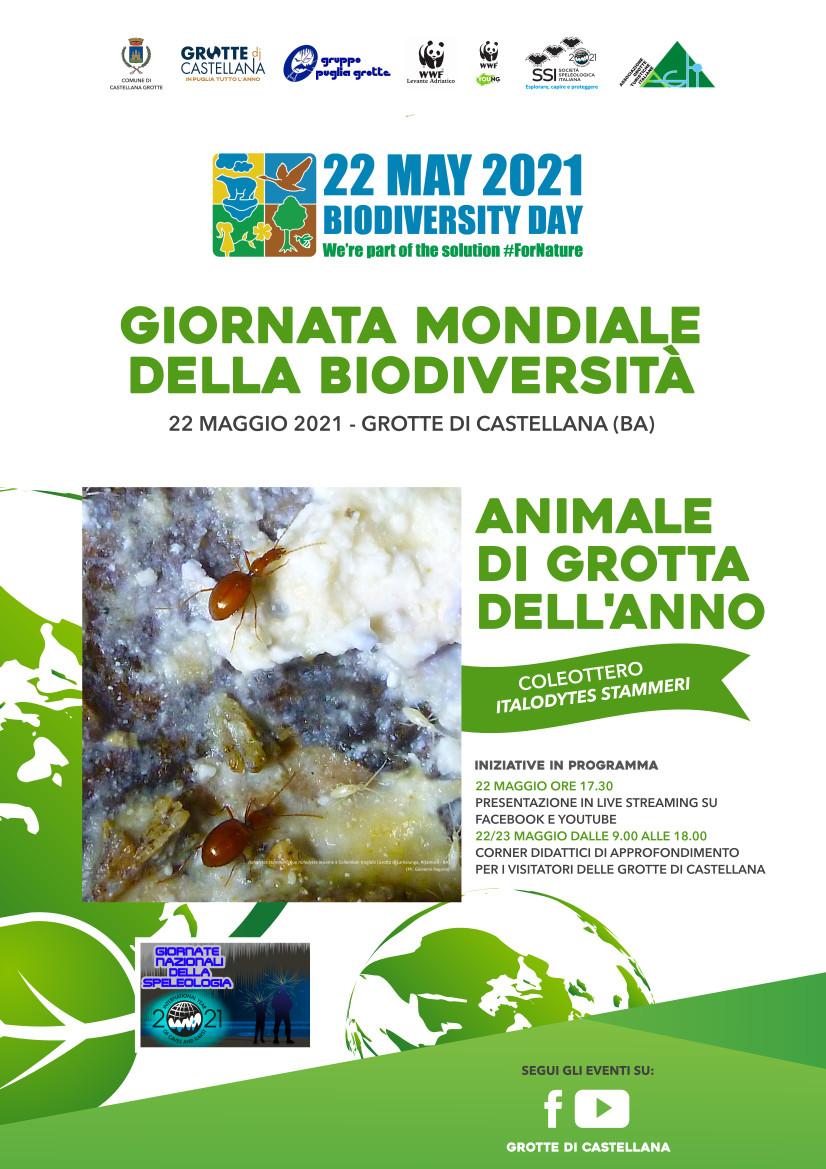 Locandina-Giornata-Mondiale-della-Biodiversità-Castellana-Grotte-WWF-Levante-Adriatico 2021