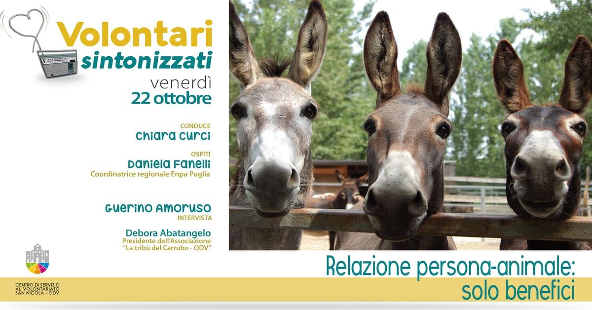 Banner Relazione persona animale solo benefici Volontari sintonizzati CSV San Nicola 2021